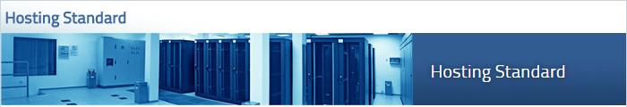 hosting standard w internet_pl